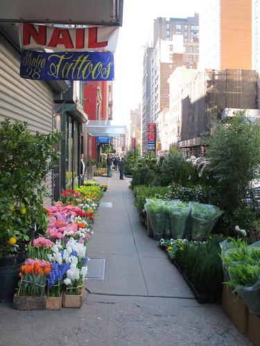 Chelsea Flower District