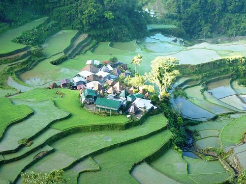 Luzon-Bangaan (142)