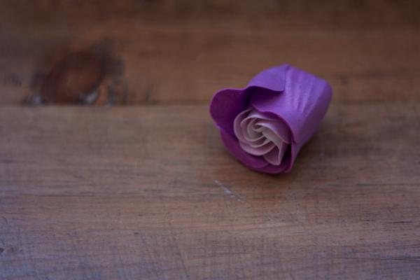 bath-roses-2