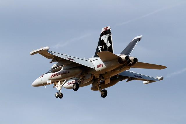 EA-18G VAQ-141 SHADOW HAWKS CAG #500