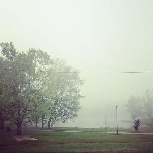 Day 88: Foggy headed