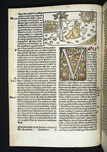 Woodcut illustration in Biblia latina