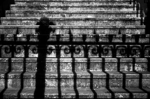 71/365(+1) by Luca Rossini