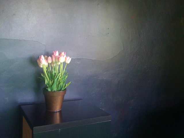 Living room wall painted in a black-like combination of many dark colors, with a pot of peach tulips on a table in front of it.