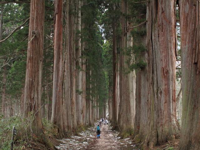 Walking in Nagano Day-2 : Togakushi