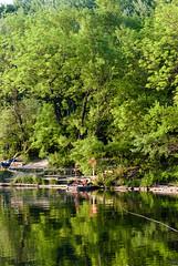 Dechantlacke, el bosque