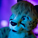 Biggest Little Fur Con 2016 - Day 4