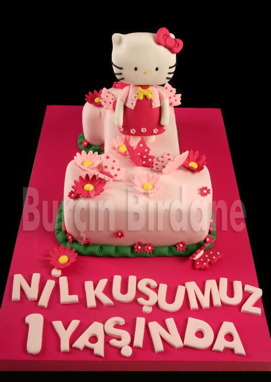 Hello Kitty 1 Yas Pastasi