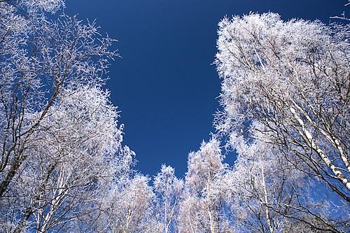 blue winter sky mars snow ice suomi finland landscape march vinter scenery finnish talvi 2012 vaasa vasa maaliskuu
