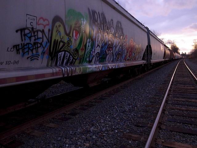 train therapy