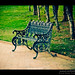 Sitting on a park bench, eyeing up girls :D by Dinesh Designs & Photography