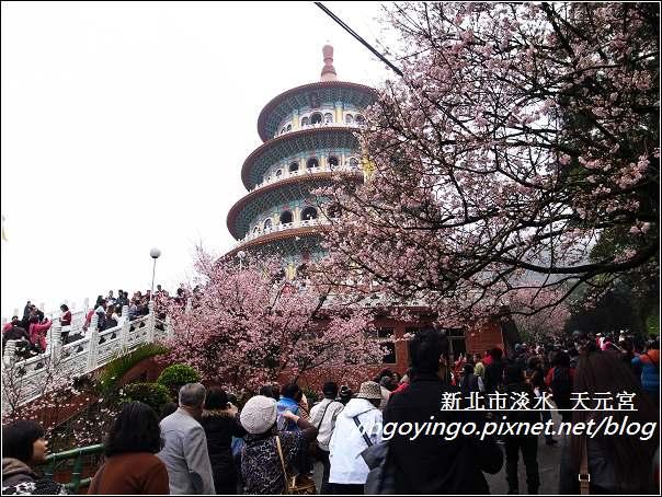 台北淡水_天元宮20120315_R0060203