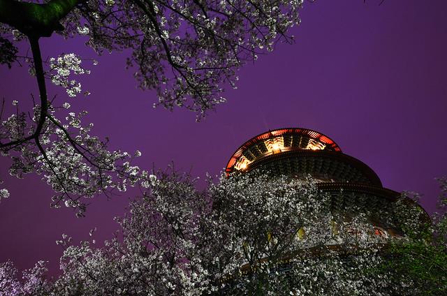 2012.03.19 台北 / 無極天元宮