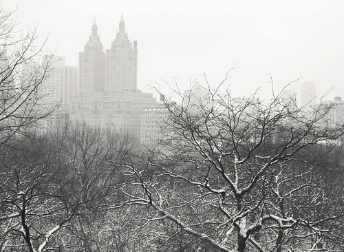 Snow Globe - San Remo - Central Park Winter - New York City