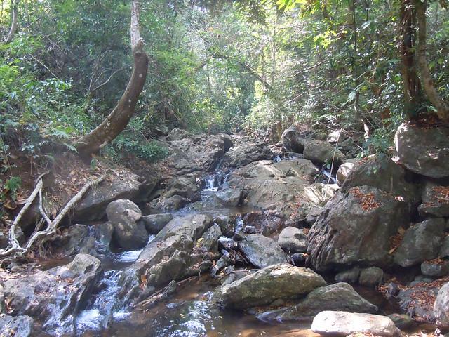 Brahmagiri_Trek_Stream1