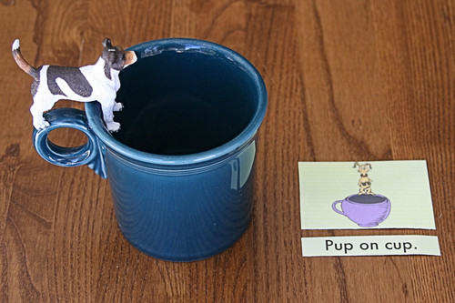 Pup on Cup Example