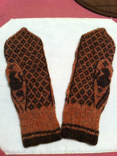 Pelle mittens palms by BlueDragon2