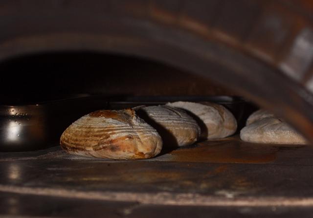 cuptor paini