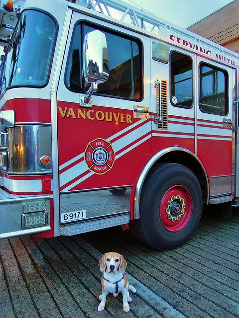 Fire Truck and Kaiser