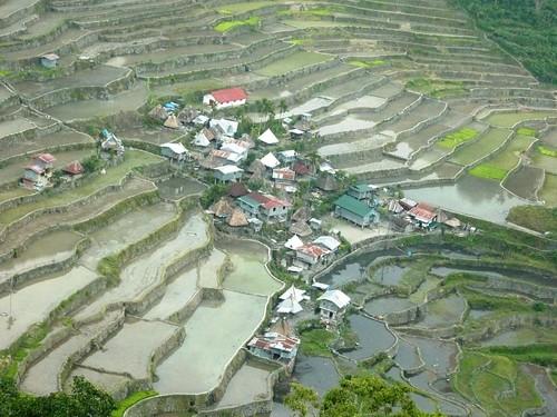 Luzon-Batad (9)