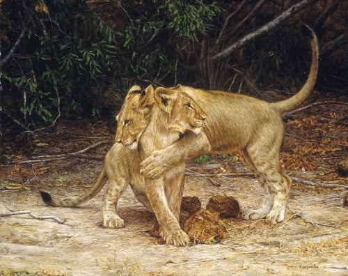 'Lion Cubs' oil on board