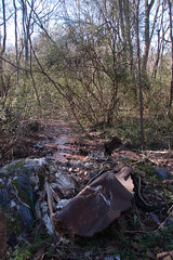 Toxic Creek