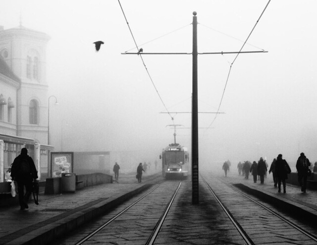 Foggy Oslo February 2012