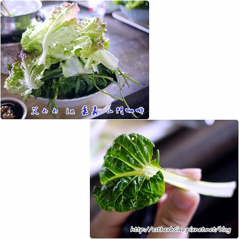 16 大量健康的野菜