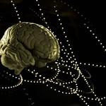 brain training games