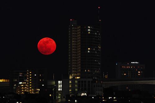 [フリー画像素材] 建築物・町並み, 都市・街, 夜景, 月, 風景 - 日本 ID:201205112000