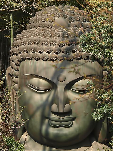 De Templos, Budas y Mariposas
