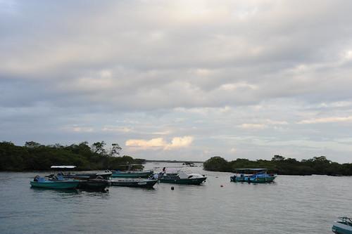 イサベラ島、到着