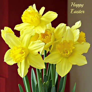A Happy Easter - Prettige Paasdagen - Joyeuse Paques - Frohe Ostern