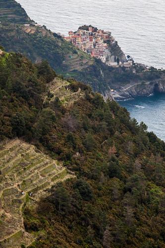 Rugged land - Cinque Terre