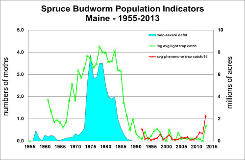 spruce_budworm_population_indicators_maine_1955_2013