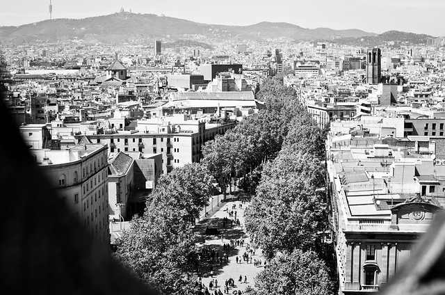 A birds eye view of Barcelona's Las Ramblas from the Columbus Monument.