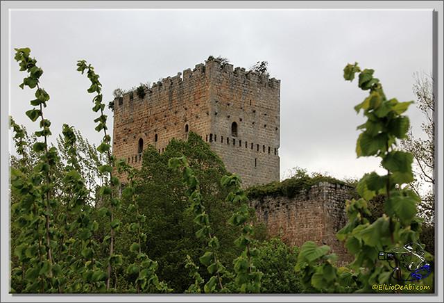 17 Anigersario en Espinosa de los Monteros