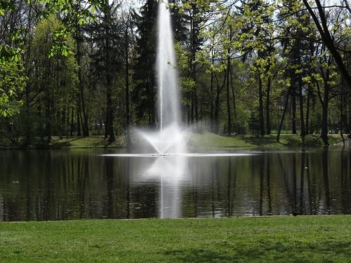 park sunset tree nature landscape pond sonnenuntergang outdoor laub teich landschaft baum gora hirschberg jelenia