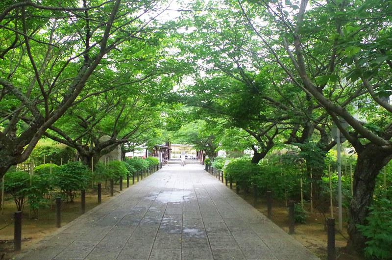 toomilog-kenchouji008