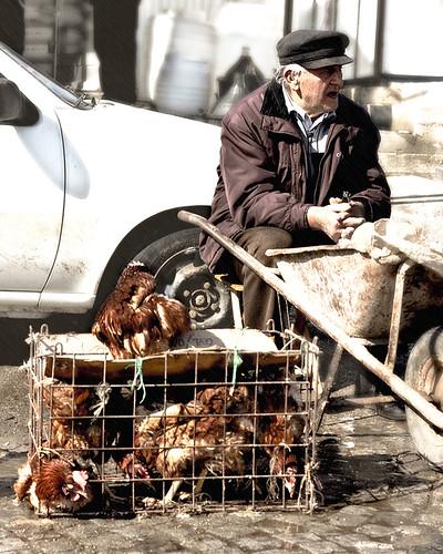 (Chicken) Prison Break
