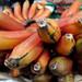 Red Bananas - Etla Market, Oaxaca por uncorneredmarket