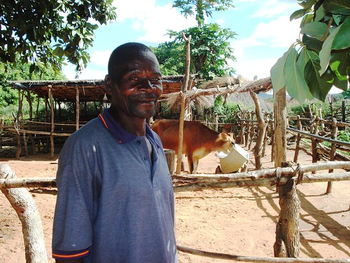Sabado Josè Maria, a former crop farmer in Mozambique, has more than doubled his income thanks to support and training he received in a USDA-funded Land O'Lakes dairy project.
