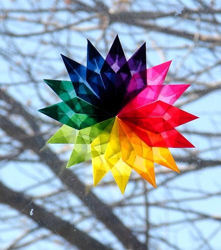 Rainbow Week 2