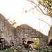 Tweeting at the Hacienda - Yucatan, Mexico por uncorneredmarket
