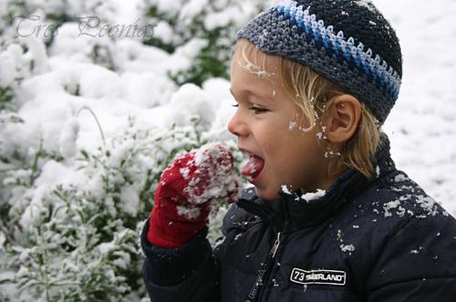 a qué sabe la nieve 2
