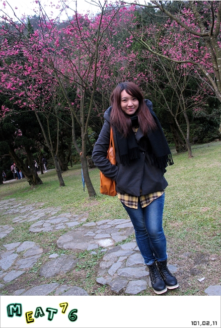 【遊記】陽明山國家公園|櫻花乍現在粉紅意境的花花世界16