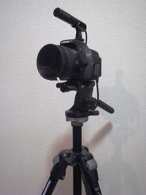 Video Head