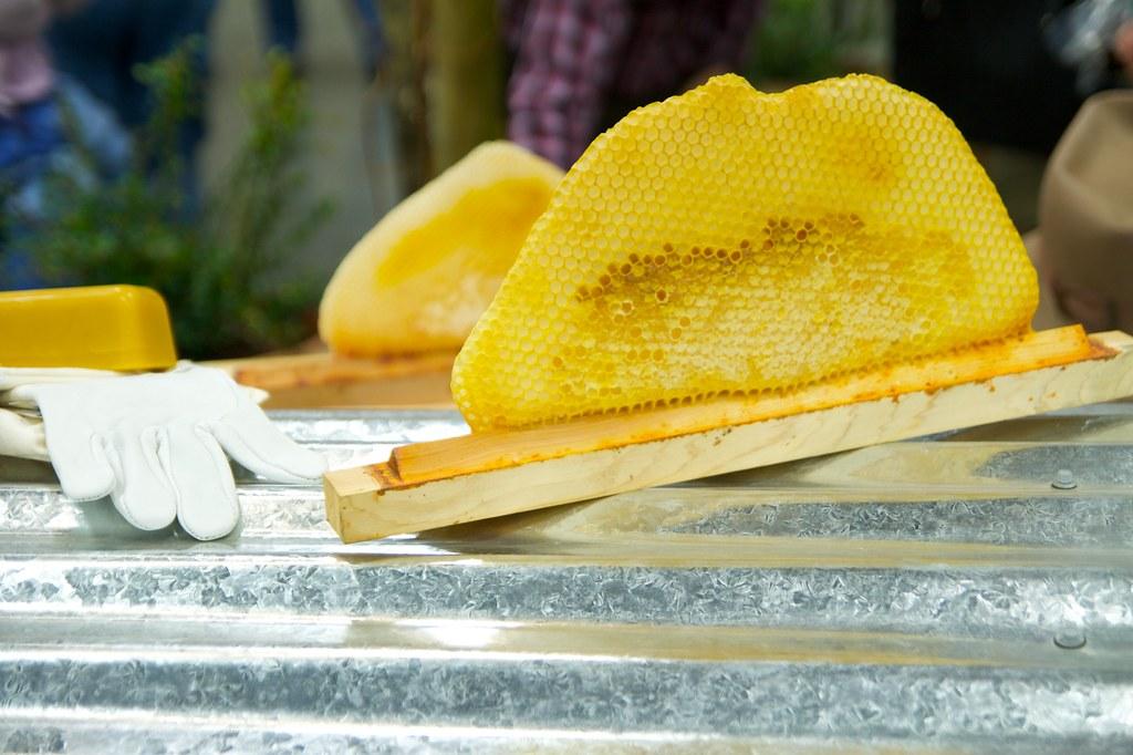 honeycomb  1247