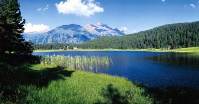 Potápění ve Švýcarsku