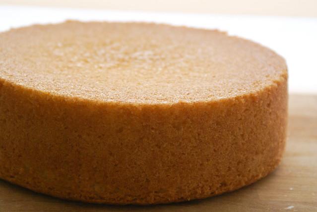 Basic vanilla sponge cake for Basic vanilla sponge